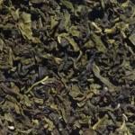 Nilgiri Green